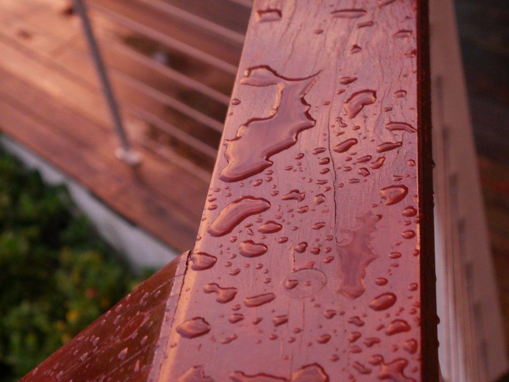 Minimising Damage During the Winter Seasons