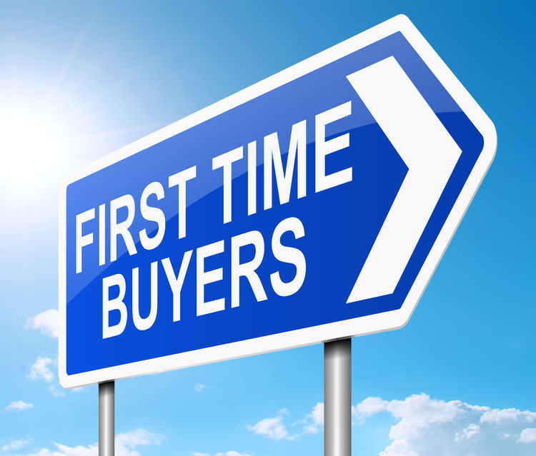 First Home Loan Deposit Scheme and Family Home Guarantee